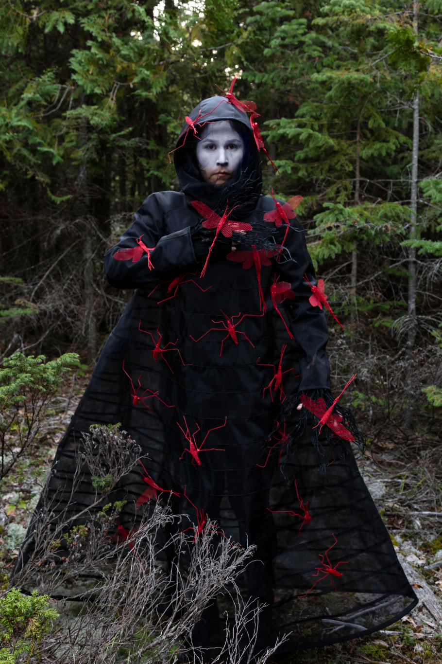 What Will I Say to the Sky and the Earth I by Meryl McMaster