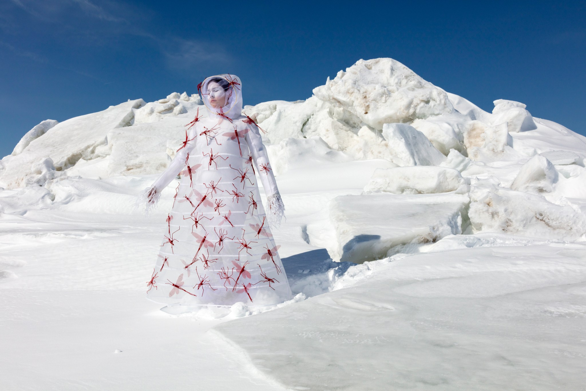 What Will I Say to the Sky and the Earth II by Meryl McMaster